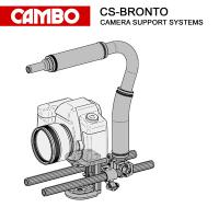 CS-BRONTO_1.JPG
