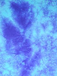 Viola-Siderale-Particolare.jpg